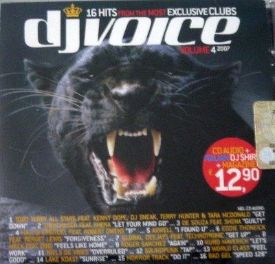 VA-DJ Voice Volume 4 (2007)