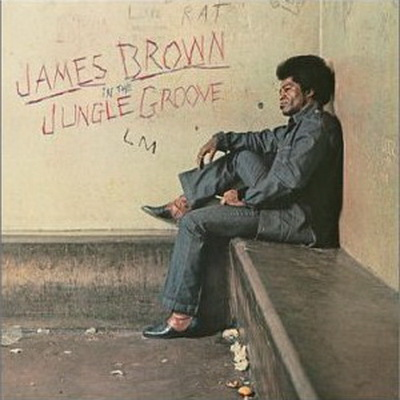 James Brown - In the Jungle Groove 1971 (2003)