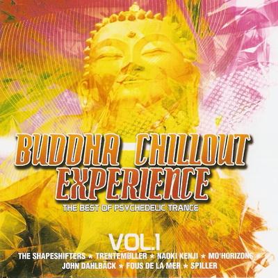 VA-Buddha Chillout Experience Vol. 1 (2008)