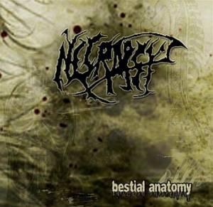 Necropsy - Bestial Anatomy (2008)