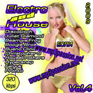 Electro and House Vol.4 (2009)