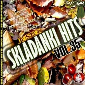 VA-Skladanki Hits Vol. 35 (2009)