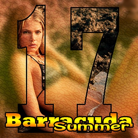 VA-Barracuda Summer vol. 17 (2009)