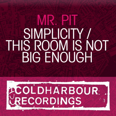Mr. Pit - This Room Is Not Big Enough (2010)