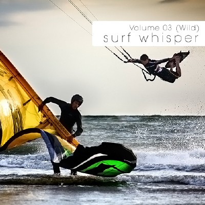 VA-Surf Whisper Volume 03: Wild (2010)