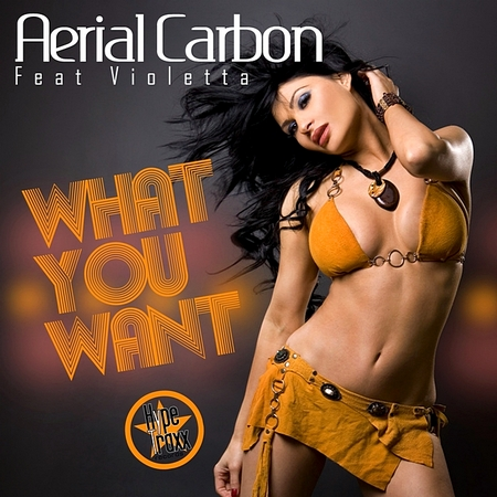 Aerial Carbon Feat Violetta-What You Want-(Promo CDM)-2010-WRE