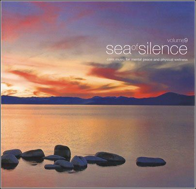 VA-Sea Of Silence Vol.9 (2010)