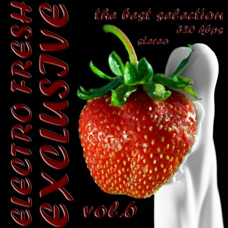 VA-ELECRO FRESH-EXCLUSIVE VOL.6 (2010)