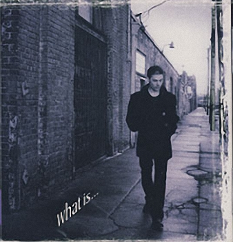 Richie Kotzen - What Is...(1998)