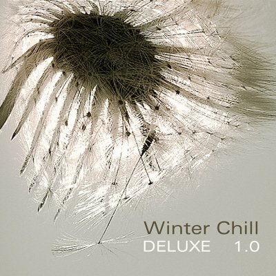 VA-Winter Chill Deluxe 1.0 (2010)