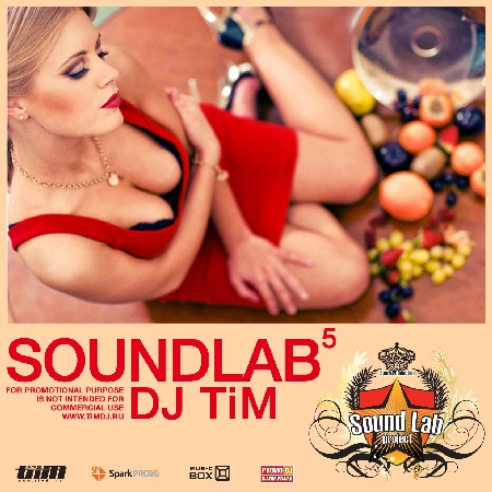 Dj TiM - SoundLab mix 5 (2011)