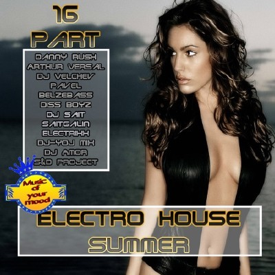 VA-Electro House Summer Part 16 (2011)