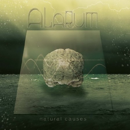 Alarum - Natural Causes (2011)