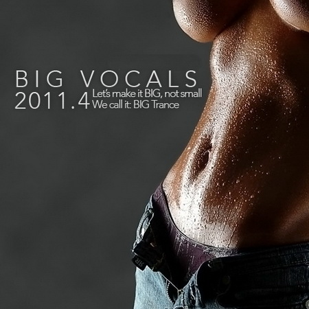 VA - BIG Vocals 2011.4 (2011)
