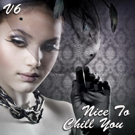 VA - Nice To Chill You Vol.6 (2012)