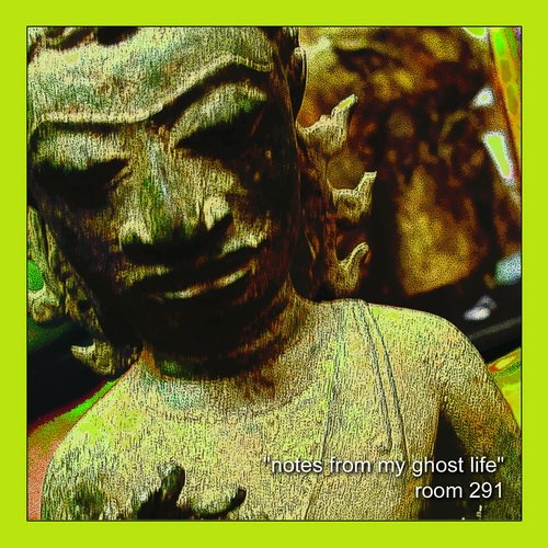 Room 291 - Notes From My Ghost Life (2013)