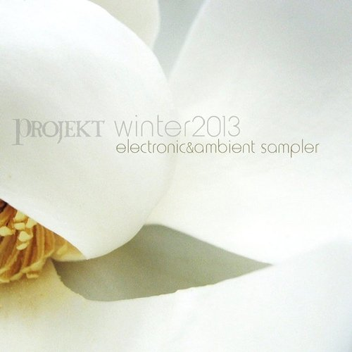 VA-Winter 2013 - Free Electronic Sampler (2013)
