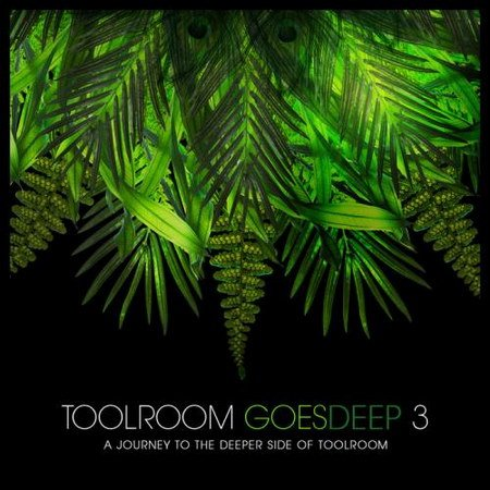 VA-Toolroom Goes Deep 3 (2013)