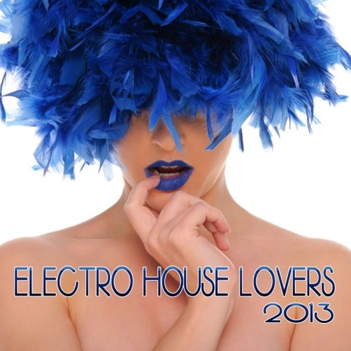 VA-Electro House Lovers (2013)