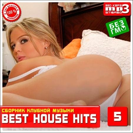 VA-Best House Hits 5 (2013)