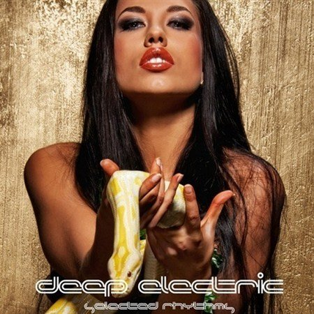VA - Deep Electric Selected Rhythms (2013)