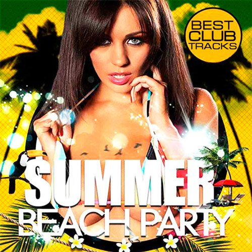 VA-Summer Beach Party (2013)