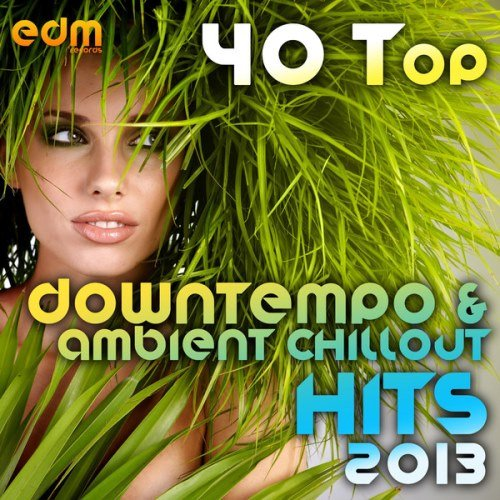 VA - 40 Top Downtempo & Ambient Chillout Hits 2013 (2013)