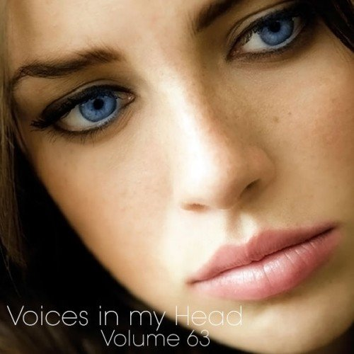 Voices In My Head Volume 63 (2013)