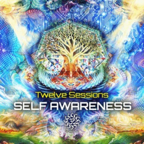 Twelve Sessions - Self Awareness (2013)