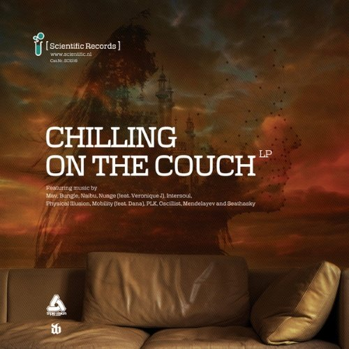 VA - Chilling on the Couch LP (2014)
