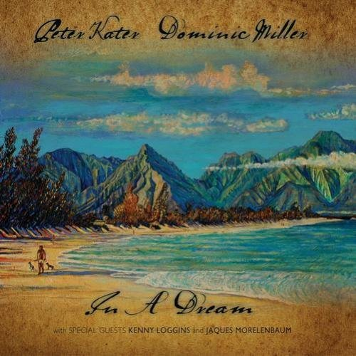 Peter Kater & Dominic Miller - In a Dream (2008) FLAC
