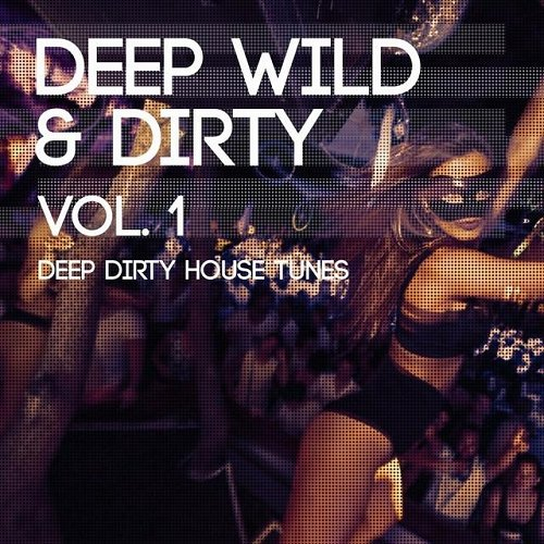 VA - Deep Wild and Dirty Vol 1 Deep Dirty House Tunes (2015)