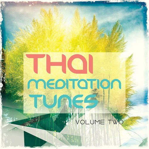 VA - Thai Meditation Tunes Vipassana Session Vol 2 Finest In Relaxation and Chill Out Music (2015)