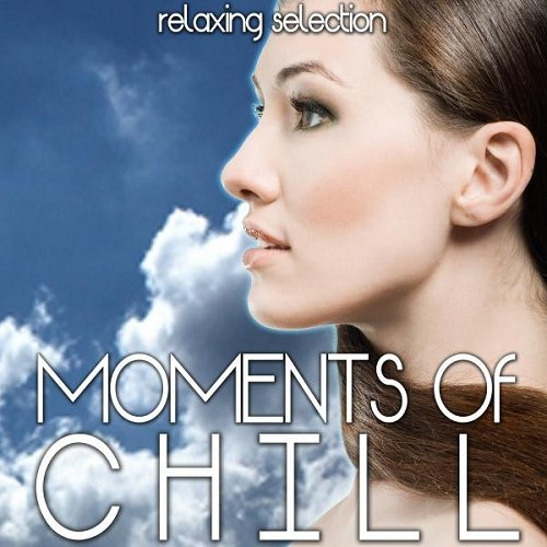 VA - Moments of Chill Relaxing Selection (2015)