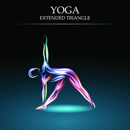 VA - Yoga Lessons Vol 6 - Extended Triangle Essential Chill out and Ambient Moods of Meditation (2015)