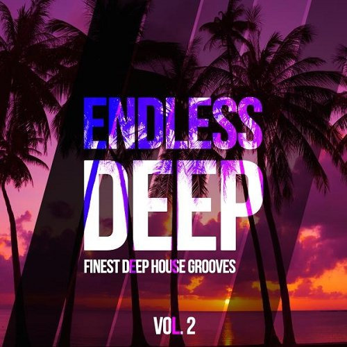 VA - Endless Deep Finest Deep House Grooves Vol 2 (2015)
