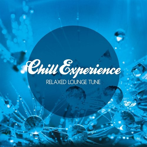 VA - Chill Experience Relaxed Lounge Tune (2015)