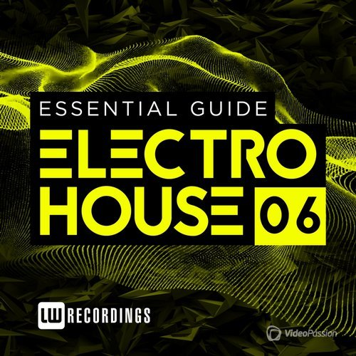 Essential Guide: Electro House, Vol. 6 (2015)
