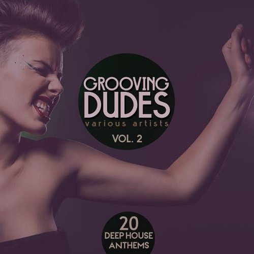 VA - Grooving Dudes Vol 2 20 Deep-House Anthems (2015)