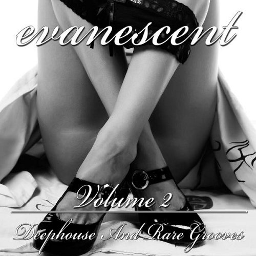 VA - Evanescent Vol 2 Deephouse and Rare Grooves (2015)
