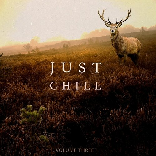 VA - Just Chill Out and Relaxing Music Vol 3 Amazing Chill Out and Ambient Music (2015)