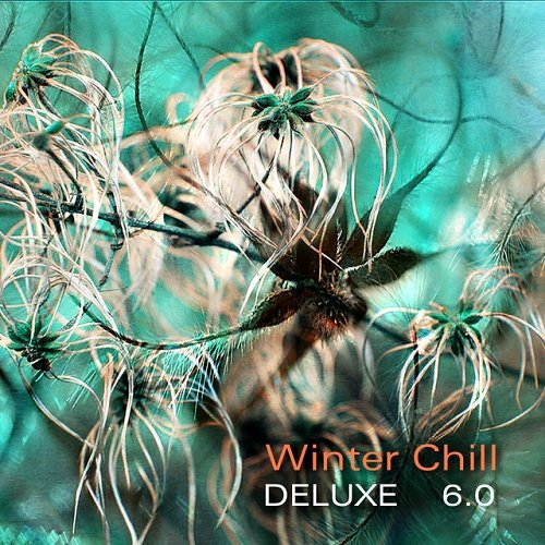 VA - Winter Chill Deluxe 6.0 (2015)