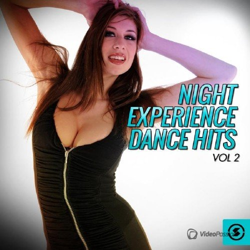 Night Experience Dance Hits, Vol. 2 (2015)