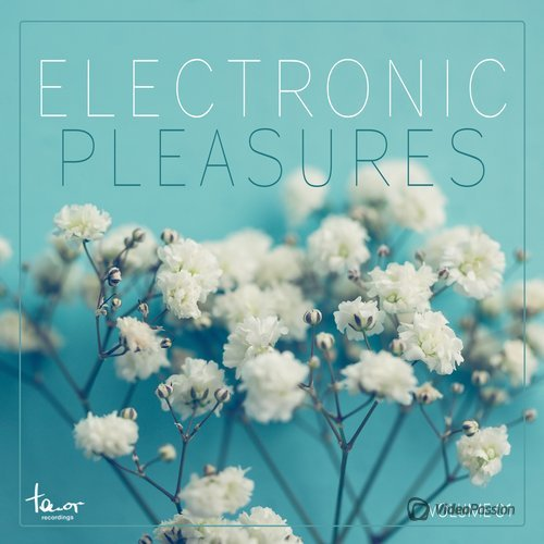 Electronic Pleasures, Vol. 1 (2015)