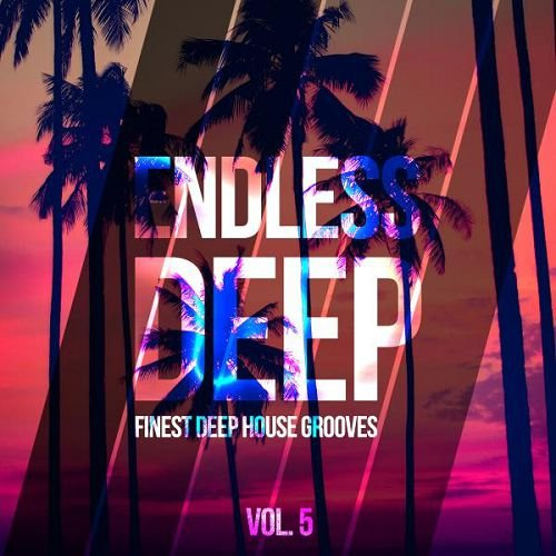 VA - Endless Deep Finest Deep House Grooves Vol.5 (2016)