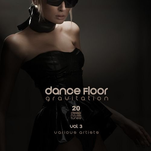 VA - Dance Floor Gravitation Vol.3 20 Deep House Tunes (2016)