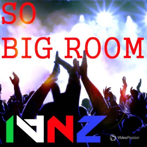 IVNZ - SO BIG ROOM (2016)