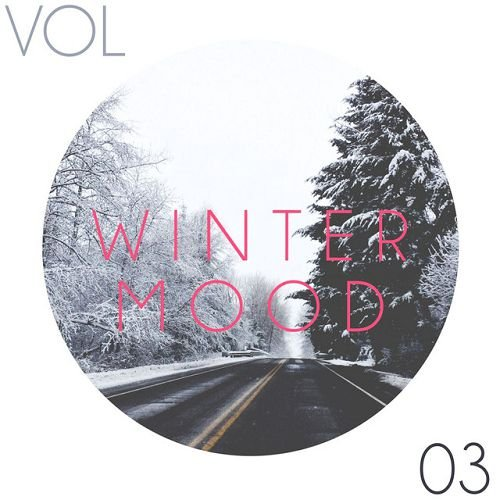 VA - Winter Mood Vol.3 (2016)
