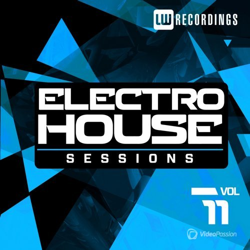 Electro House Sessions Vol. 11 (2016)