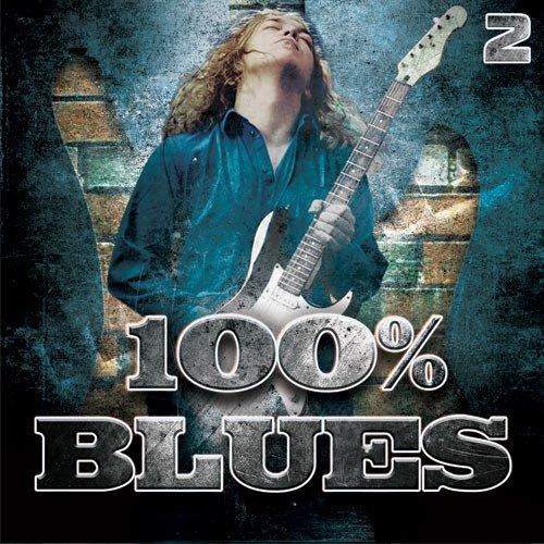 VA-100 % Blues - 2 (2016)